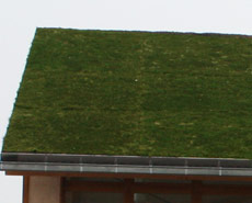 Ecogrid used for real live green roof.